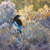 Kathryn Fehlig - Magpie in the Rabbit Brush